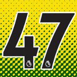 Mason 47